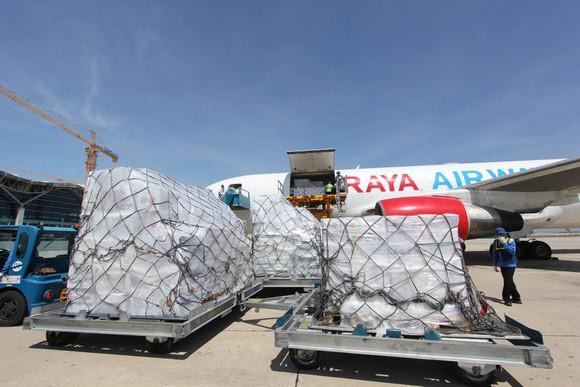 Hàng cứu trợ từ Cộng đồng ASEAN đến Việt Nam ảnh 4