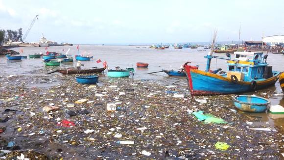 Sông Cà Ty chảy qua thành phố biển thơ mộng bị ô nhiễm nghiêm trọng ảnh 1