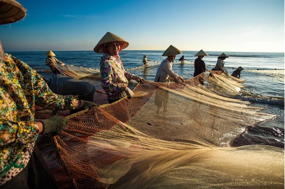 Fisherwomen in the central province of Thanh Hoa unfurl their fishing nets in the early morning on Sam Son Beach. (Photo: VNA/VNS)