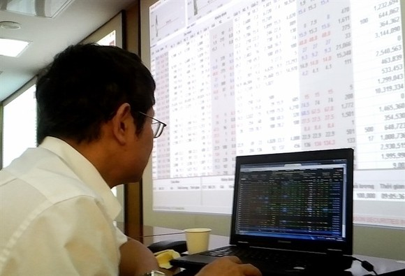 An investor at Saigon Securities Inc's trading office in Hanoi (Photo: VNS Photo)