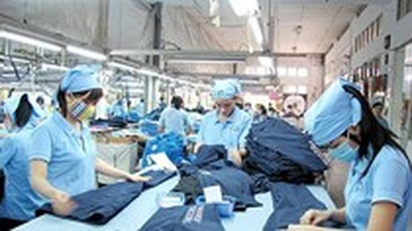 Workers at Saigon Garment 3 Company (Photo: SGGP)
