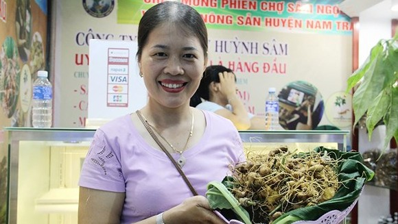 One place to gain access to authentic Ngoc Linh ginseng is at the monthly ginseng fair in Nam Tra My district
