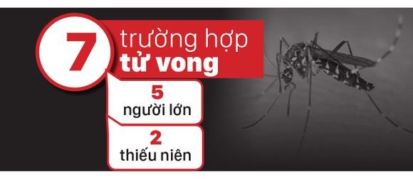 Mắc sốt xuất huyết dẫn đến tử vong: Do chủ quan ảnh 2