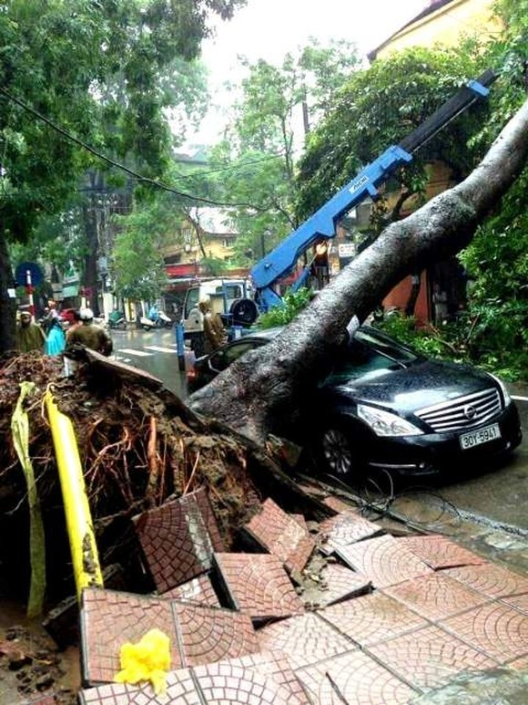 Hà Nội ngập lụt, cây đổ, sạt lở đê do ảnh hưởng bão số 3 ảnh 3