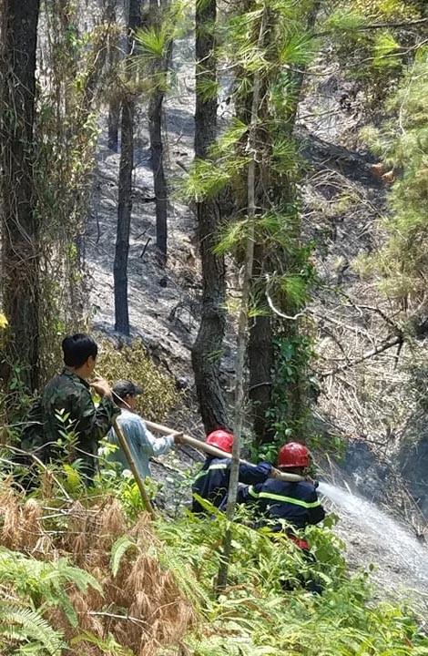 Huy động hàng ngàn người chữa cháy rừng thông tại Huế ảnh 1