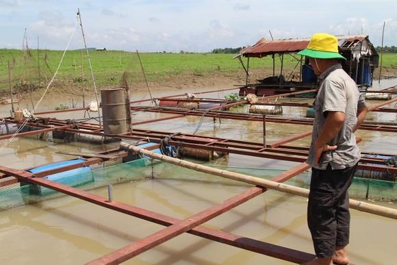 Hiểm họa từ hơn 4.500 điểm xả thải đổ vào sông Đồng Nai ảnh 1
