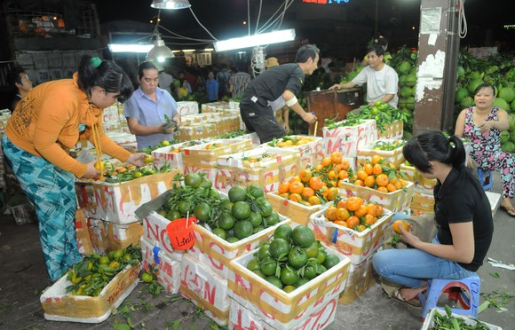 Trái cây trong nước bán tại chợ                    .       Ảnh: THÀNH TRÍ
