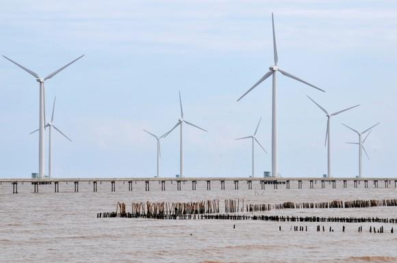 Điện gió cung ứng điện tại tỉnh Bạc Liêu. Ảnh: CAO THĂNG