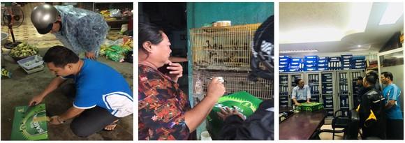 Phát triển bền vững nghề nuôi chim Yến tại Nam Trung bộ và Tây Nguyên ảnh 22