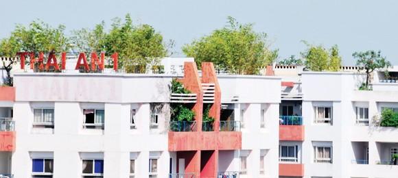 Xây dựng chung cư xanh - xu hướng tất yếu ảnh 1