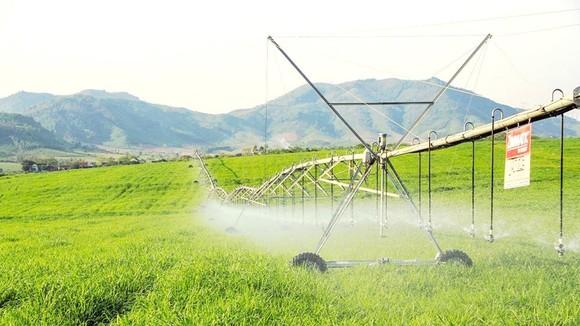 Tưới nước công nghệ cao trên đồng cỏ trang trại TH