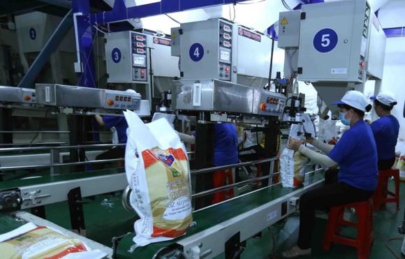 Đóng gói sản phẩm gạo xuất khẩu. (Ảnh: Vũ Sinh/TTXVN)