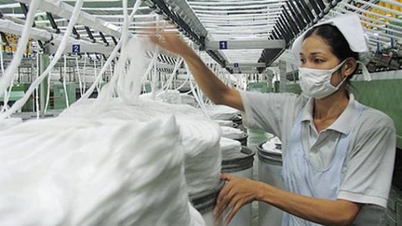 Việt Nam là thị trường quan trọng nhất của ngành bông Mỹ