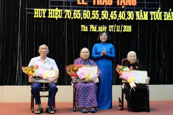 Nhiều quận trao Huy hiệu Đảng đợt 7-11-2018 ảnh 2