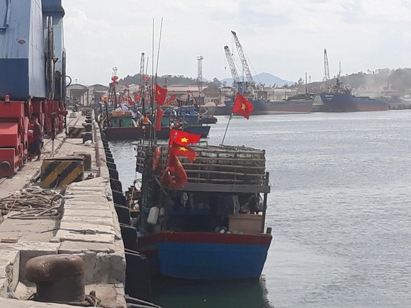 Tàu cá 'phá' tàu hàng ảnh 1