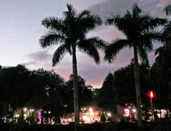 達樂高原的夜景。