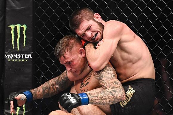 """UFC 242: """"Đại bàng Nga"""" Khabib lại lừa thế siết cổ khiến đối thủ phải đập tay xin hàng ảnh 3"""