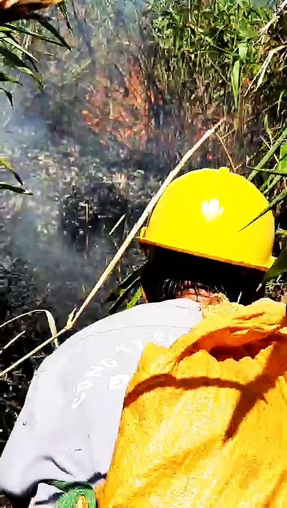 Trên 100 người cật lực dập lửa ở rừng Đèo Cả để bảo vệ rừng và nhà cửa ảnh 2