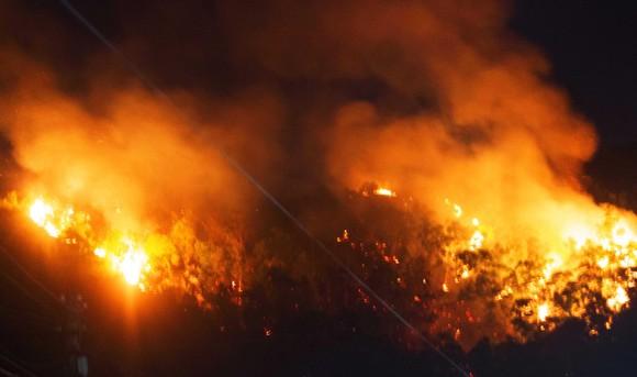 Núi giữa thành phố Quy Nhơn bùng lửa, uy hiếp hàng trăm hộ dân ảnh 1