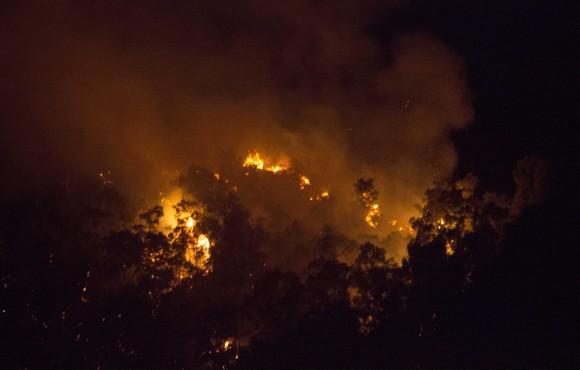 Núi giữa thành phố Quy Nhơn bùng lửa, uy hiếp hàng trăm hộ dân ảnh 6