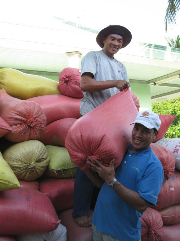 Giá lúa tăng ở ĐBSCL, nông dân có lãi ảnh 1