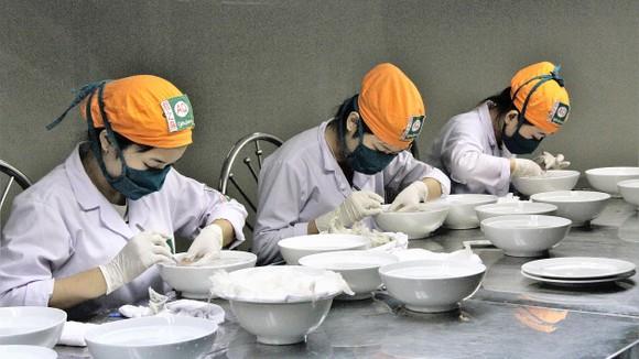 Chế biến tổ yến tại Trung tâm Triển lãm  yến sào Việt Nam (huyện Cần Giờ, TPHCM)