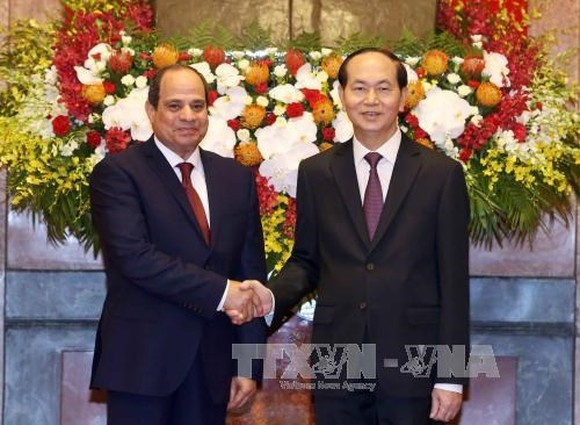 President Tran Dai Quang (R) and his Egyptian counterpart Abdel Fattah el-Sisi (Source: VNA)