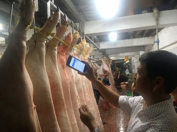 Officials checking pork information at Binh Tan slaughtering house (Photo: SGGP)