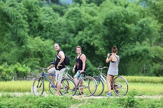 Int'l visitors to Vietnam reach 11.6m