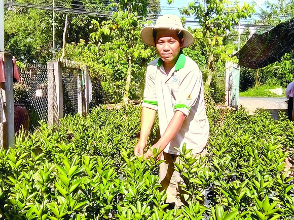 Farmer Nguyen Ngoc Thuan in Hoa Long Commune in Lai Vung District spent 6 years to work overseas.