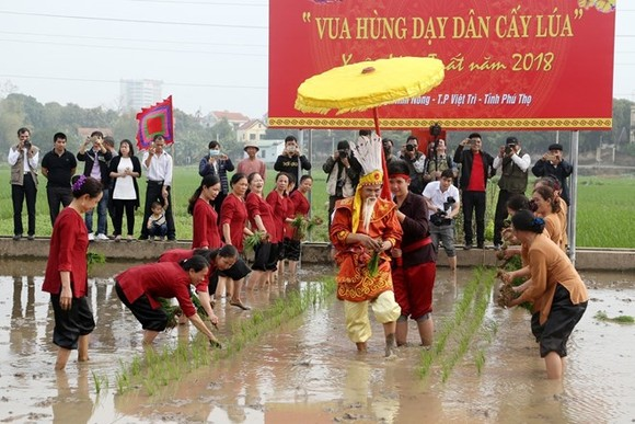 The Hung Kings' teaching of rice cultivation is re-enacted at the festival (Photo: VNA)