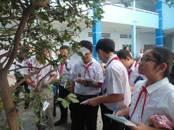 Các trường tại TPHCM được chủ động thực hiện tiết học ngoài nhà trường ảnh 1