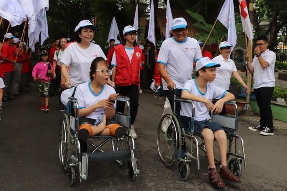 Hơn 5.000 người đi bộ Vì nạn nhân chất độc da cam ảnh 4