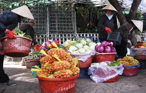 Sắc màu rau quả chợ Đà Lạt ảnh 4