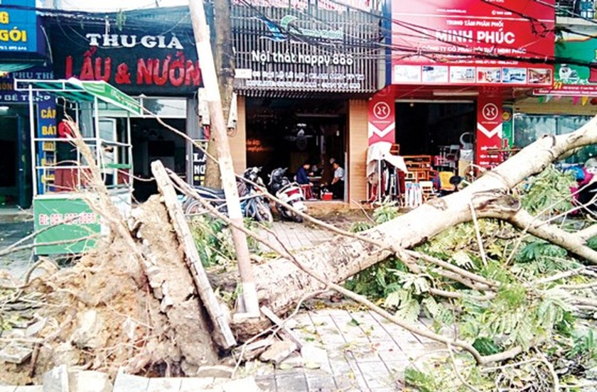 North- central region overcoming consequences after typhoon Talas  ảnh 1