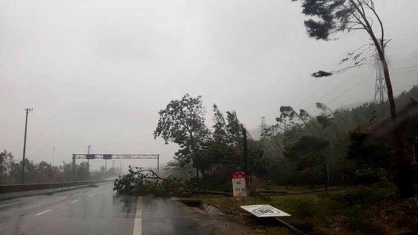 Typhoon Doksuri makes landfall in central provinces  ảnh 1
