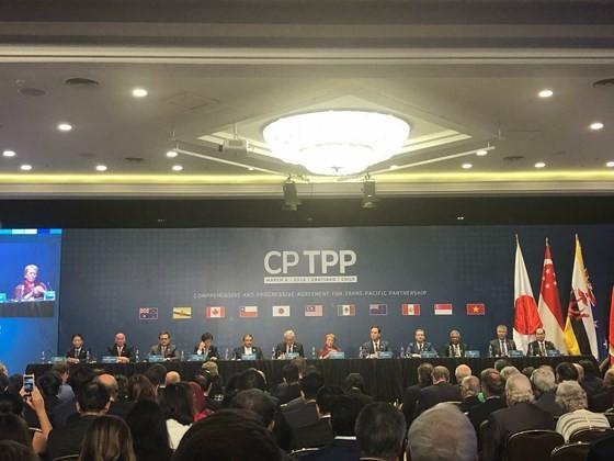 Vietnam officially joins CPTPP ảnh 1