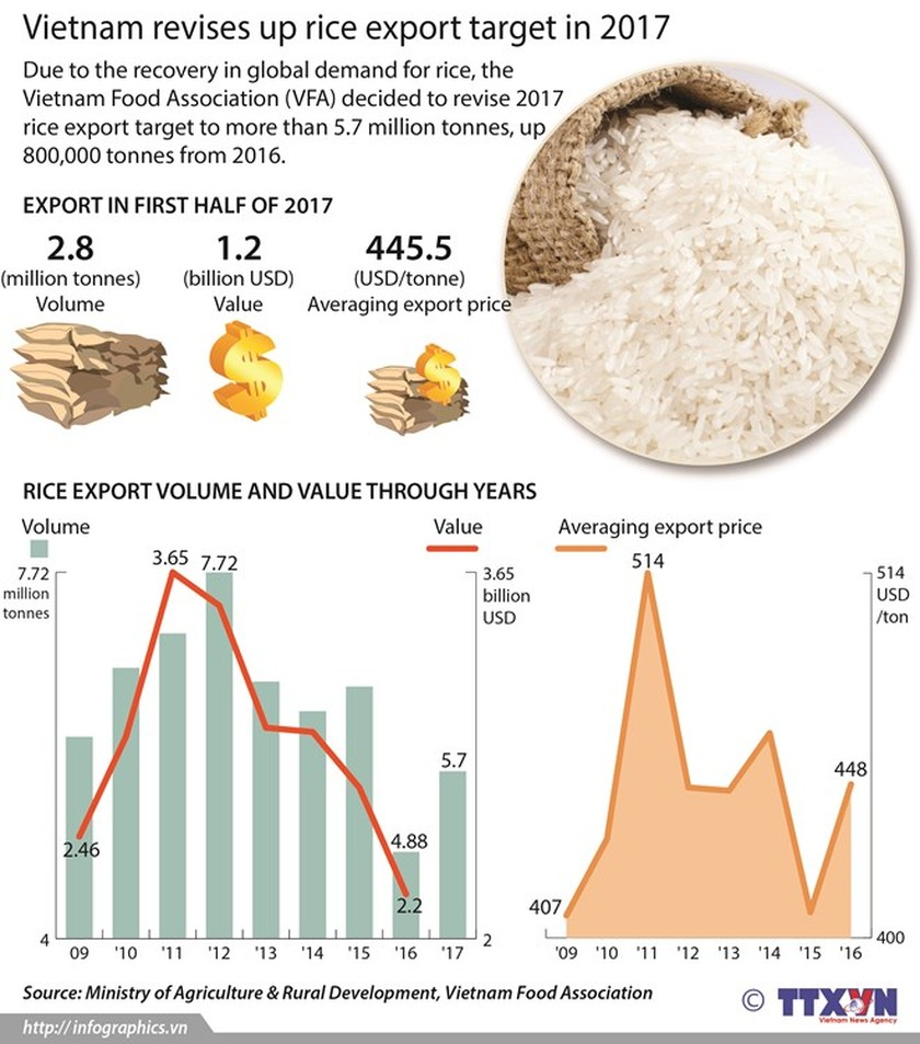 Huge potential for Vietnam's rice exports to Singapore ảnh 1