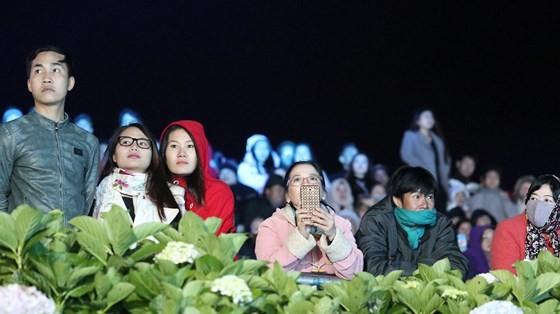 Dat Lat Flower Festival opens ảnh 12