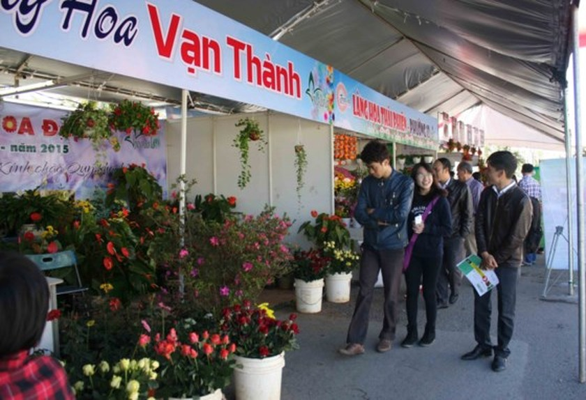 7th Da Lat Flower Festival to be launched from Dec 23-27 ảnh 2