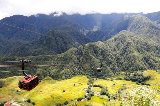 Muong Hoa Valley in ripe rice season ảnh 2