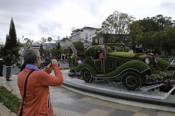 Int'l bonsai & flower exhibition opens in Dalat ảnh 2