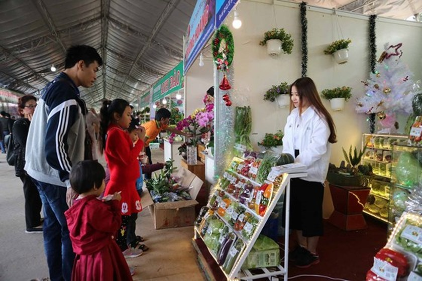 VIDEO: Visitors enjoy high-tech agriculture fair in Dalat ảnh 4