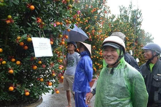 Bonsai Kumquat -Hoian 2018 launched ảnh 1