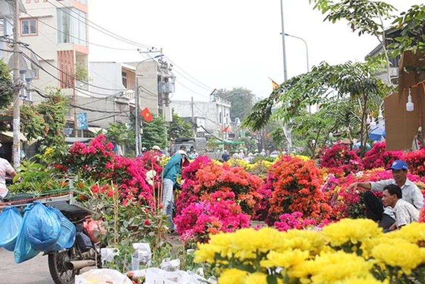 HCMC people prepare bonsai flowers for Tet ảnh 2