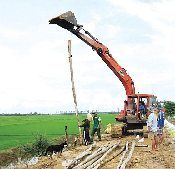 Mekong farmers earn money on early flooding season ảnh 1