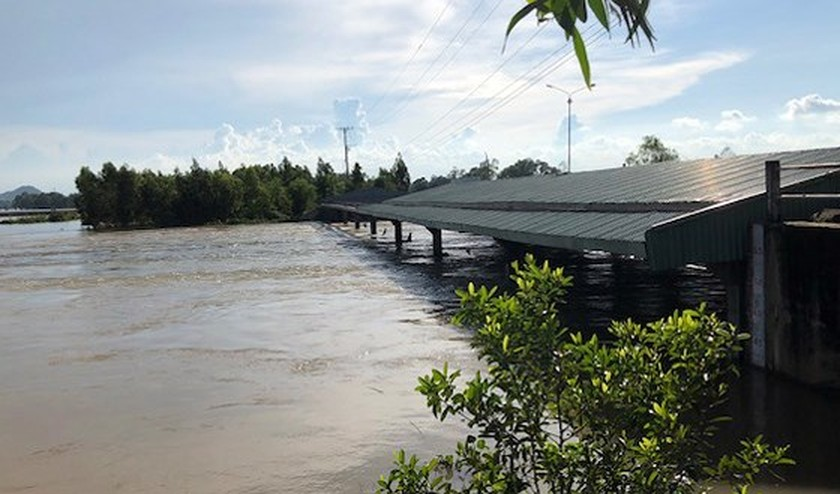 Mekong urged to deal with floods ảnh 2