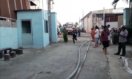Fire destroys hundreds of tons of dragon fruit in Binh Thuan ảnh 1