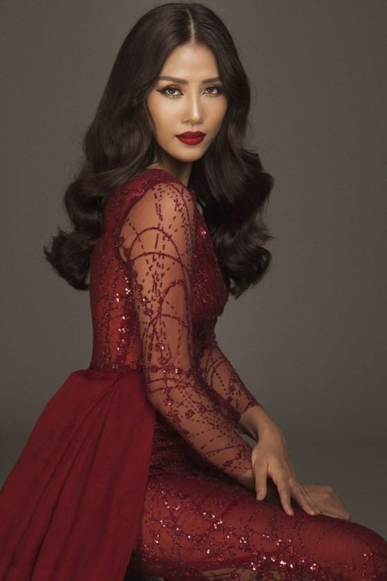 Nguyễn Thị Loan được đề cử tham dự Hoa hậu Hoàn vũ Thế giới 2017 ảnh 3