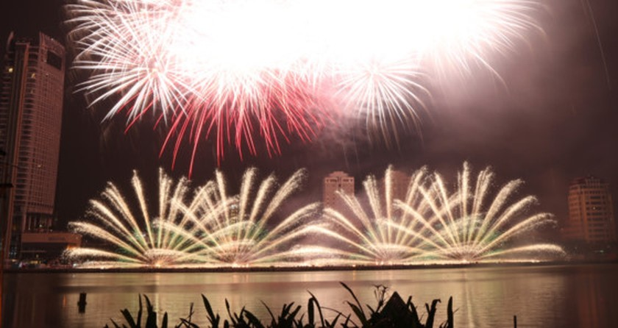 DIFF 2017 opens ảnh 6